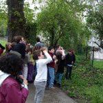 Les enfants observent les oiseuax dans la nature